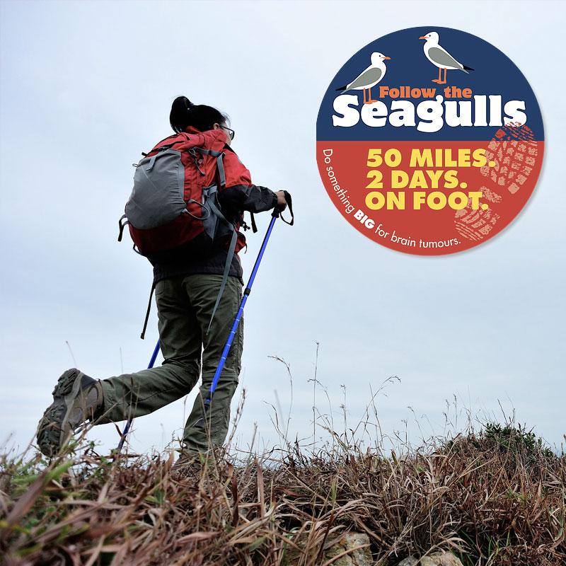 follow the seaguls
