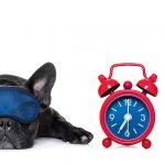 eventbrite internal fatigue